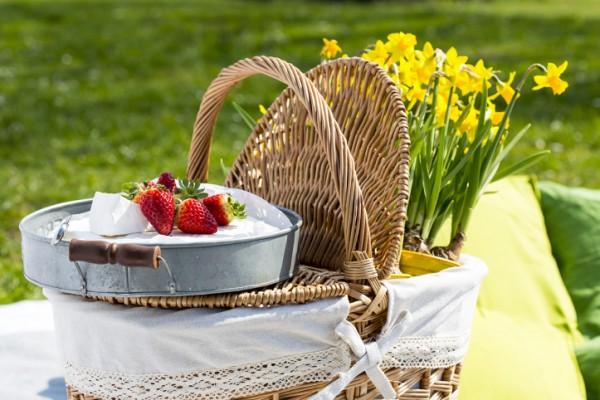 picnic rome