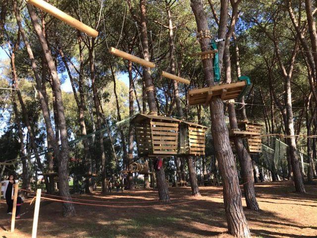 parc aventure rome parcours arbres_BeyondRoma